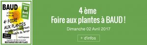 foire-aux-plantes à Baud