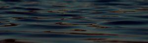 traitement-des-eaux-pole-habitat-ecologique